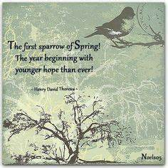 Seasonal Saying... Spring And Snow Quotes