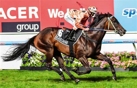 caviar horses australian horse sit does race australia moonee valley bel esprit winx justhorseracing