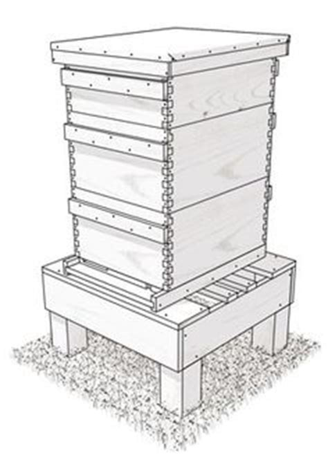 build   bee hive stand show   honey