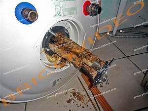 Probleme Chauffe Eau Electrique : probl mes plomberie r sistance chauffe eau lectrique ~ Melissatoandfro.com Idées de Décoration