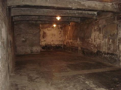 chambre a gaz faux voyage à auschwitz birkenau lycée madeleine