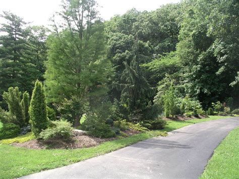 soil berm design landscape berms and mounds design ideas decors landscape berm design ideas