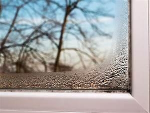 Kondenswasser Am Fenster : kondenswasser am fenster verhindern eat smarter ~ Frokenaadalensverden.com Haus und Dekorationen