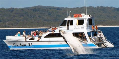 Fishing Boat Charters Hervey Bay by Freedom In Hervey Bay Fraser Coast Regional Council