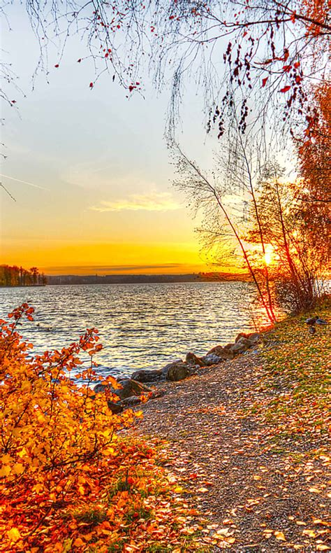 See more ideas about fall wallpaper, wallpaper, iphone wallpaper. 50+ Autumn Phone Wallpaper on WallpaperSafari