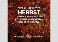 Endlich ist wieder Herbst und man kann wieder Menschen