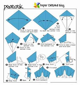 Peacock Origami  Step By Step Instructions