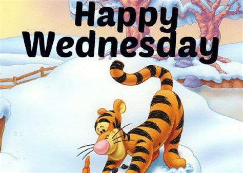Best 25 Happy Wednesday Meme To Share | by Erica Gray | Medium