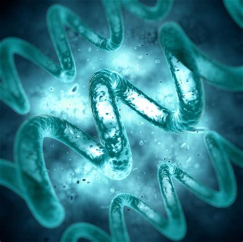 Wie werden magen darm viren übertragen