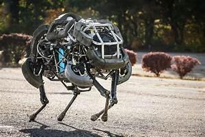Wallpaper Boston Dynamics Wild Cat  Best Robots Of 2015