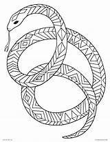 Snake Coloring Pages Adult Animals Print Tribal Animal Printable Rattlesnake Mamba Snakes Adults Drawing Ninjago Coiled Sunset Getcolorings Decorative Outstanding sketch template