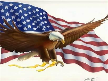 Flag American Eagle Bald Desktop Symbols America