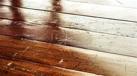 How To Remove Scratches From Hardwood Floors Realtorcom®