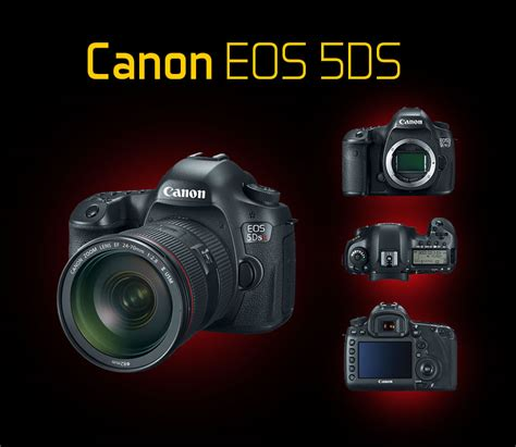 Top 5 Best Full Frame Dslr Canon Cameras For Pro Photographers