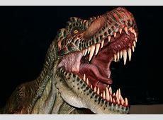 Les dinosaures sont de retour David On Net