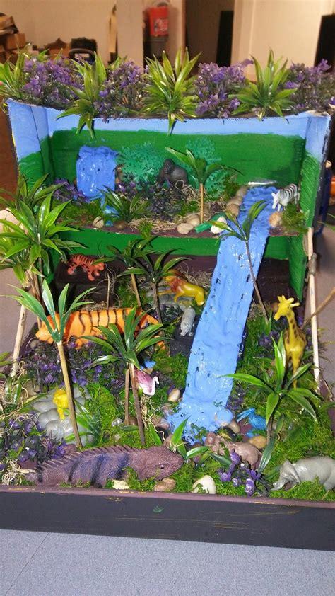 Tropical Rainforest Ecosystem Maquetas de ecosistemas