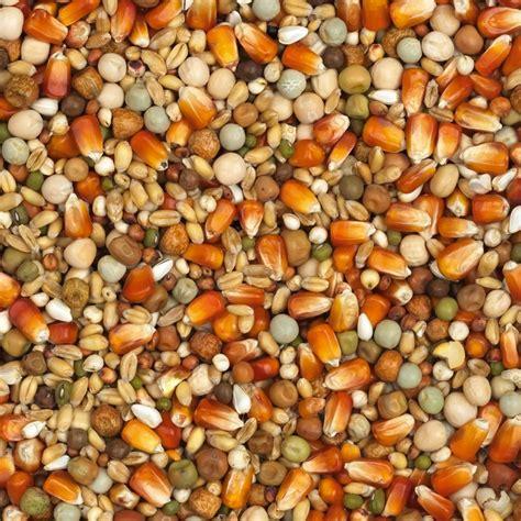cuisine pigeon racing cribbs maize nr 25 product vanrobaeys