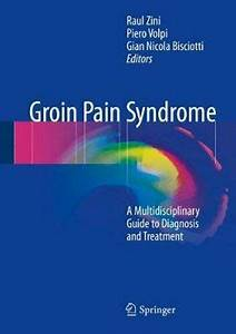 Groin Pain Syndrome  A Multidisciplinary Guide To