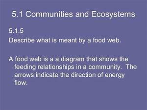 Topic 5 Ecology  U0026 Evolution