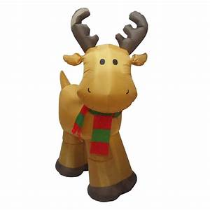 Shop Holiday Living 5-ft Lighted Reindeer Christmas