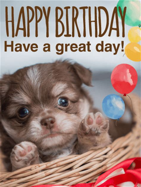 adorable puppy birthday card birthday greeting cards