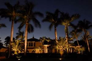 Landscape lighting naples fl tree