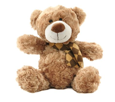 teddy bears things to do with kids