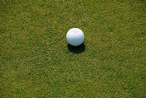 Golf Ball On Putting Green Free Stock Photo - Public ...