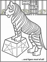 Circus Coloring Pages Tiger Printable Popular sketch template