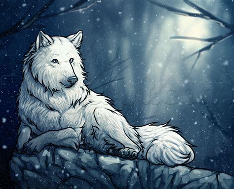 draw  white wolf step  step forest animals