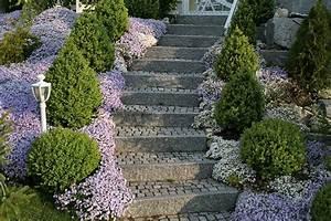 Böschung Bepflanzen Fotos : uebigau gartenbau frauenfeld fotogalerie ~ Orissabook.com Haus und Dekorationen