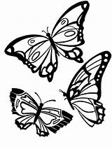 Butterfly Coloring Pages Animals Printable sketch template