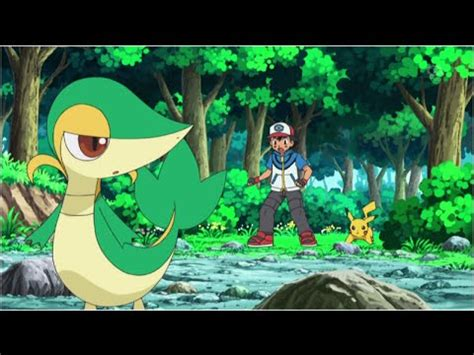 ash atrapa  snivy youtube