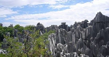 The Famous Stone Forest In Yunnan, China  Trawel India Mails