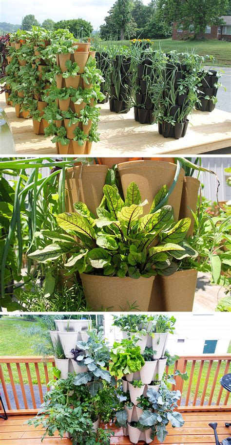 vertical vegetable garden ideas for beginners these
