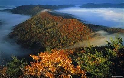 Gap Background Autumn Nature Wallpapers Landscapes Tablet