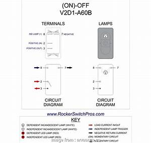 17 Professional 2  Momentary Switch Wiring Images