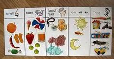 senses images senses preschool  senses