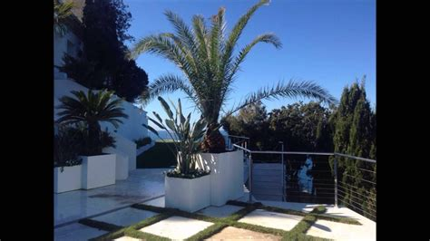 fioriere terrazzo fioriere con palme terrazzo marina di grosseto