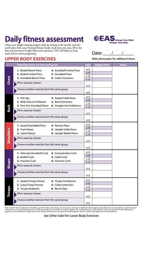 upperbody exercise body  life workout workout sheets