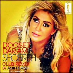 Shohreh Solati - 'Dooset Daram (Amin Kaveh Remix)' MP3 ...