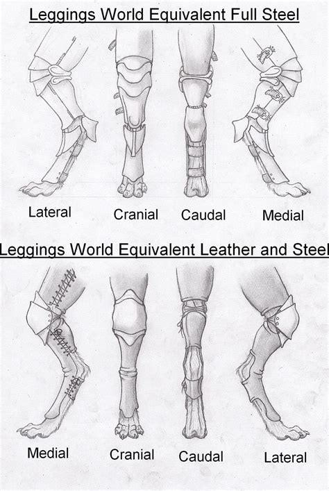 digitigrade leg armor drawing draw legs animal russelltuller concepts furry reference feet deviantart anthro anatomy digigrade drawings dragon horse shoes
