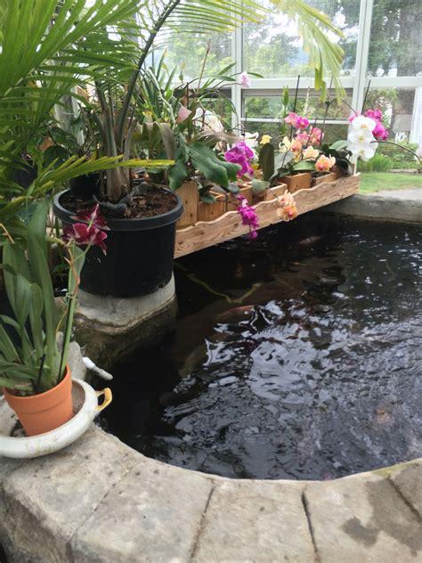 Backyard Gardens Ideas by A Collection Of Whimsical Garden Ideas Hawk Hill