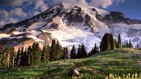 Mt Rainier Wallpaper 25950