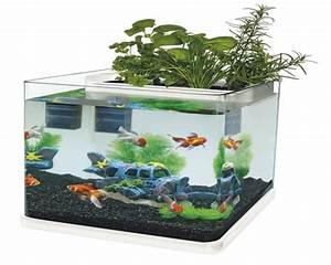 Aquarium Set Led : superfish aquaponics 23 aquarium set inkl filterm und led ~ Watch28wear.com Haus und Dekorationen