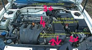 Radiateur De Chauffage 206 : purge radiateur 206 votre site sp cialis dans les accessoires automobiles ~ Medecine-chirurgie-esthetiques.com Avis de Voitures