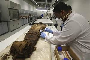 Human Corpse Gets Ancient Egyptian Embalming Treatment To ...