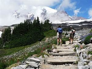 Mount Rainier National Park Best Time To Visit