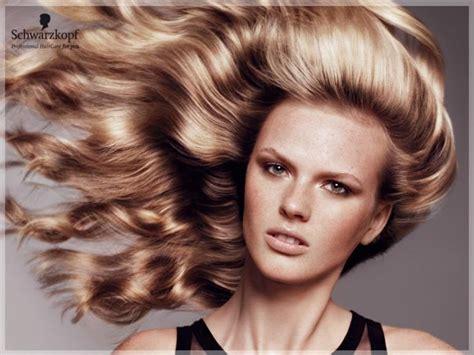 Schwarzkopf Hair Products @ Sense Online