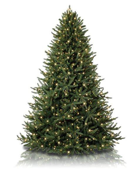different types of artificial christmas trees to brighten